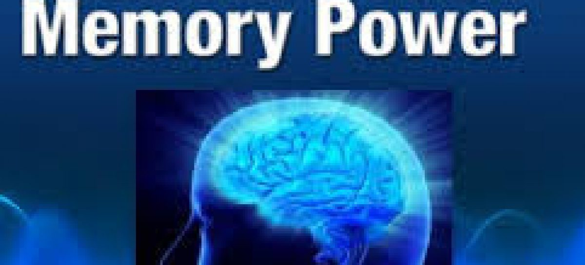Foods That Increase Our Memory Power