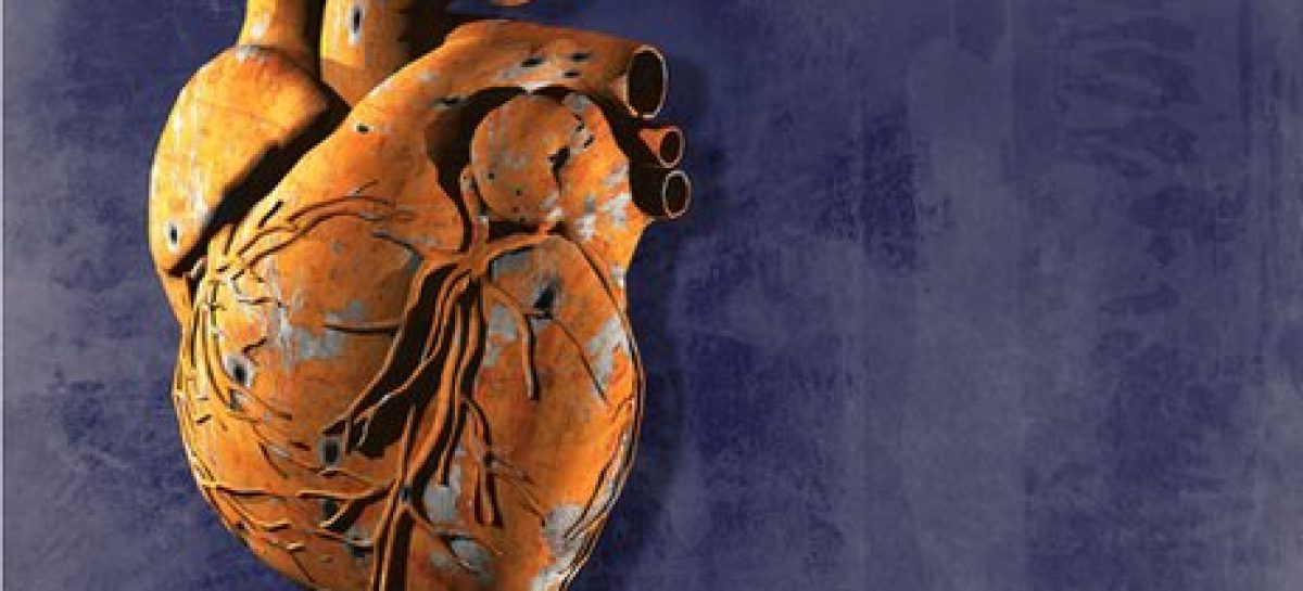 Leading ideas to avoid heart diseases and stroke easily
