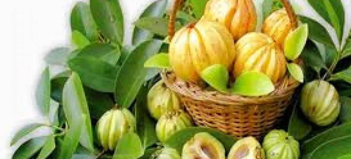 The most exceptional health benefits of Garcinia Cambogia
