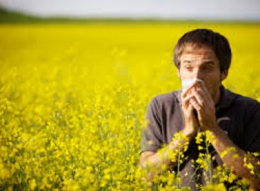 How To Fight Hay Fever