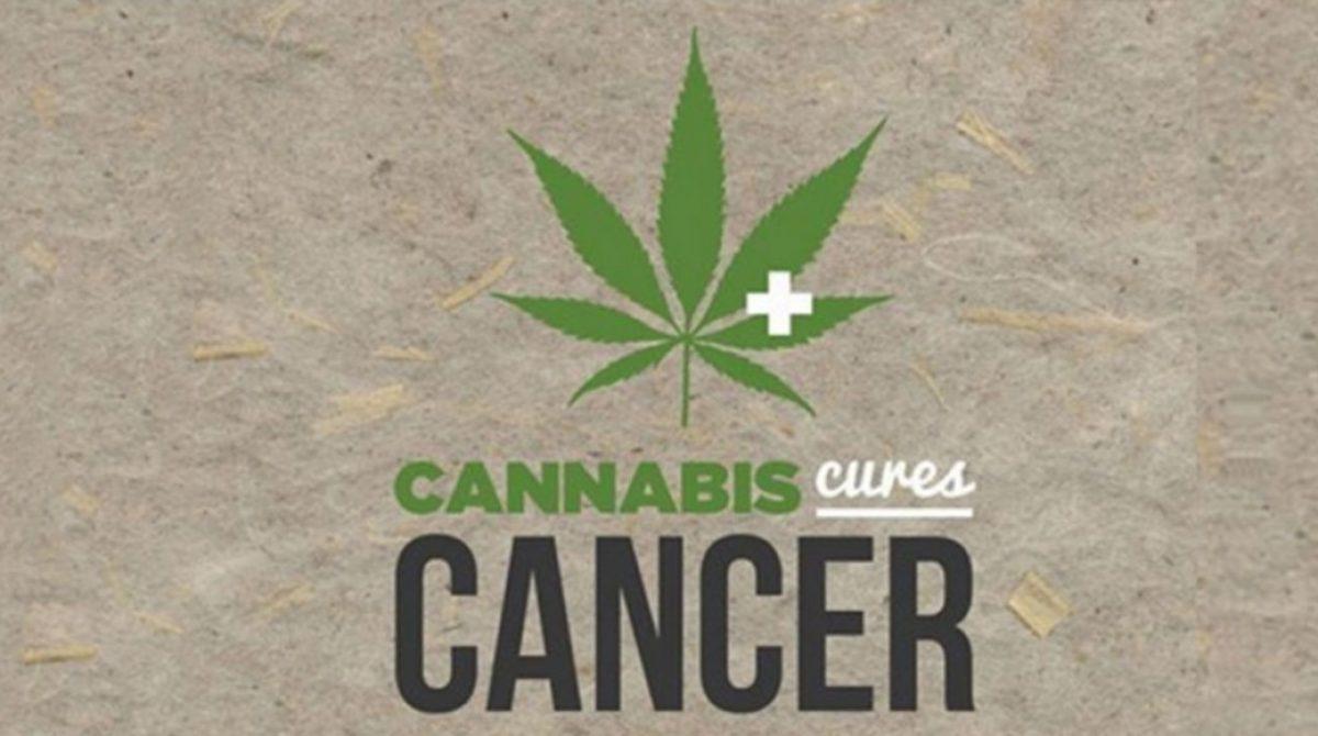 3 Ways Cannabis Affects Cancer Cells
