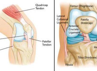 3 Common Knee Injuries