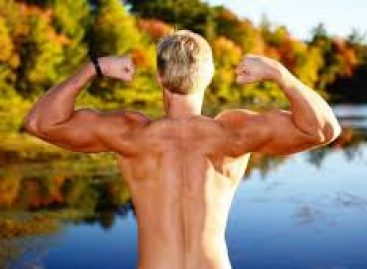 FITNESS – The Science of Fitness